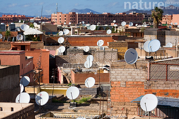 View across the rooftops of Marrakech, Morocco, February 2010., AFRICA,BUILDINGS,CITIES,LANDSCAPES,MARKETS,MOROCCO,NORTH AFRICA,PEOPLE,ROOFTOPS,SATELLITE DISHES,URBAN,VERTICAL,NORTH-AFRICA, Toby Roxburgh