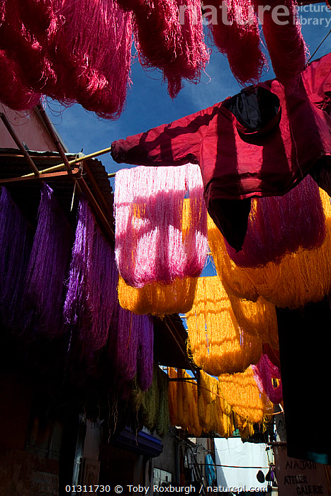 Skeins of wool and clothing hanging up to dry in the dye souk, Marrakech, Morocco, March 2010.  ,  AFRICA,CLOTHING,COLOURFUL,DRYING,DYE,DYES,HANGING,INDUSTRY,LOW ANGLE SHOT,MOROCCO,NORTH AFRICA,SOUKS,TRADITIONAL,VERTICAL,WOOL,NORTH-AFRICA  ,  Toby Roxburgh