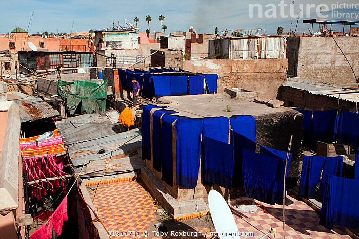 Hand-dyed scarves on rooftop in the dye souk, Marrakech, Morocco, March 2010., AFRICA,BUILDINGS,CITIES,CLOTHING,COLOURFUL,DRYING,DYE,DYES,HANGING,INDUSTRY,MOROCCO,NORTH AFRICA,PEOPLE,ROOFTOPS,SOUKS,TRADITIONAL,WOOL,NORTH-AFRICA, Toby Roxburgh