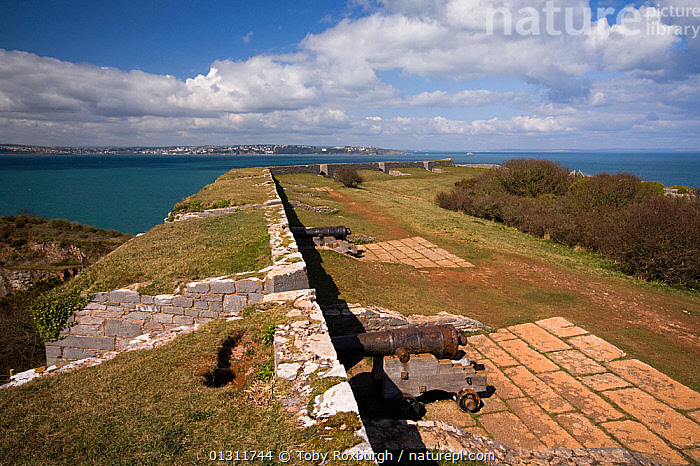 Napoleonic fort and 19th century cannons at Berry Head National Nature Reserve, Brixham, Devon, England., BUILDINGS,CANNONS,CASTLES,COASTS,ENGLAND,EUROPE,FORTS,HISTORICAL,LANDSCAPES,RESERVE,TOWNS,UK,United Kingdom, Toby Roxburgh