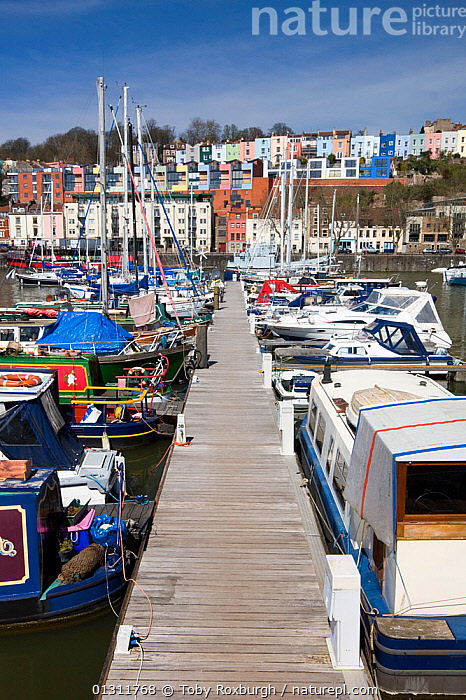 Bristol marina, on Bristol's floating Harbour, England, April 2010., BARGES,BOATS,BUILDINGS,CITIES,EUROPE,HARBOURS,HOUSEBOATS,JETTIES,MARINAS,MIXED BOATS,MOORED,MOTORBOATS,SAILING BOATS,UK,VERTICAL,United Kingdom, Toby Roxburgh