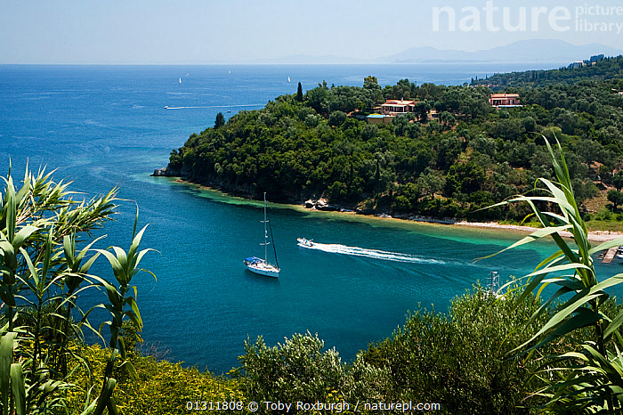Headland off San Stefanos Bay, Corfu, Greece, June 2010., AERIALS,BOATS,BUILDINGS,CORFU,CRUISING,ESCAPISM,EUROPE,GREECE,HIGH ANGLE SHOT,ISLANDS,LANDSCAPES,MEDITERRANEAN,MIXED BOATS,MOTORBOATS,SAILING BOATS,YACHTS,CONCEPTS,core collection xtwox, Toby Roxburgh