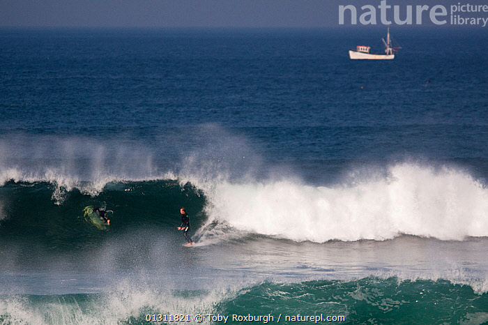 Surfer on a wave in Booby's Bay with boat beyond, Cornwall, England, August 2010., BOATS,BREAKING,COASTS,ENGLAND,EUROPE,EXTREME,MEN,PEOPLE,PROFILE,SPORTS,SPRAY,SURFING,UK,WATERSPORTS,WAVES,United Kingdom, Toby Roxburgh