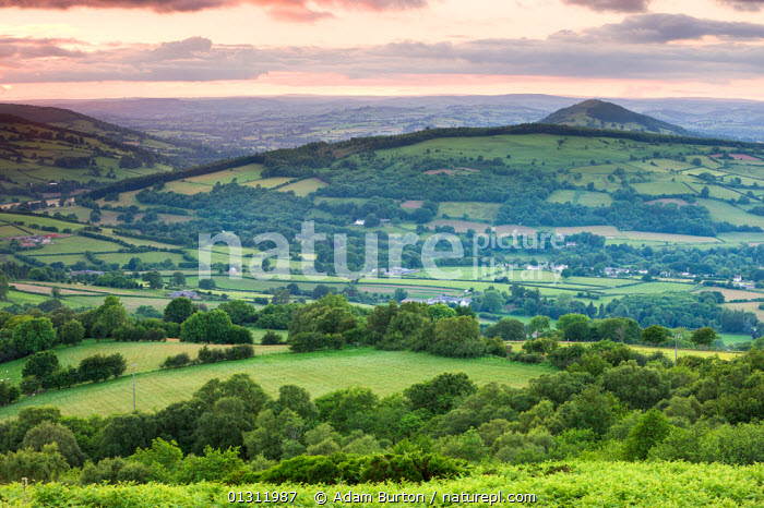 The Usk valley near Llangynidr at sunset, Brecon Beacons National Park, Powys, Wales. June 2009, ATMOSPHERIC,BRECON BEACONS,BUILDINGS,COUNTRYSIDE,EUROPE,FIELDS,HILLS,LANDSCAPES,NP,RURAL,SUMMER,SUNSET,UK,UPLAND,VILLAGES,National Park,United Kingdom, Adam Burton