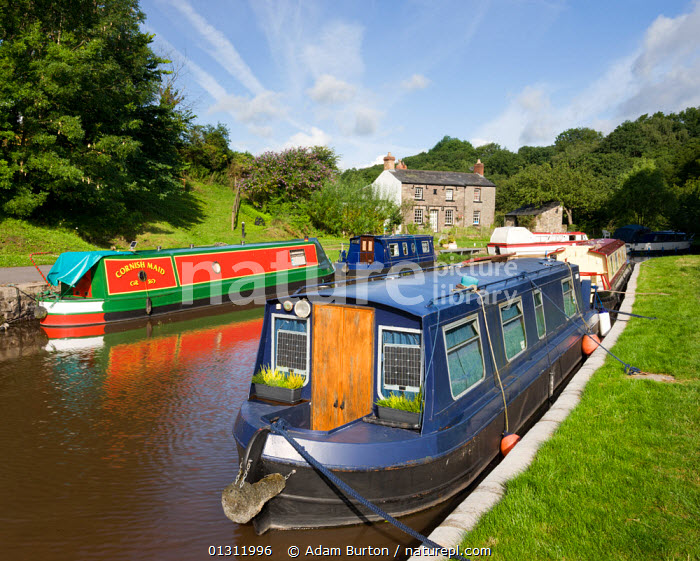 Narrowboats on the Monmouthshire and Brecon Canal at Llangattock, Brecon Beacons National Park, Powys, Wales, UK. July 2009, BOATS,BRECON BEACONS,BUILDINGS,CANAL BOATS,CANALS,EUROPE,HOMES,LANDSCAPES,MOORED,NP,UK,UPLAND,WATER,National Park,WALES,United Kingdom,core collection xtwox, Adam Burton