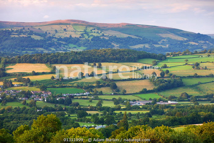 Rolling farmland on the outskirts of Crickhowell / Crug Hywel in the Brecon Beacons National Park, Powys, Wales, UK. July 2009, AERIALS,BRECON BEACONS,COUNTRYSIDE,EUROPE,FARMLAND,FIELDS,HILLS,HORIZON,LANDSCAPES,NP,RURAL,SUMMER,TOWNS,UK,UPLAND,VILLAGES,National Park,United Kingdom, Adam Burton