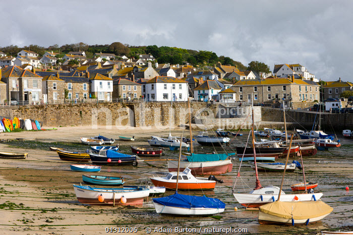 Views over Mousehole village and harbour at low tide, Mousehole, south Cornwall, England. October 2009, AUTUMN,BOATS,COASTS,DRY LAND,EUROPE,FISHING BOATS,HARBOURS,LANDSCAPES,LOW TIDE,MIXED BOATS,MOORED,MOTORBOATS,OPEN BOATS,SAILING BOATS,UK,VILLAGES,United Kingdom,core collection xtwox, Adam Burton