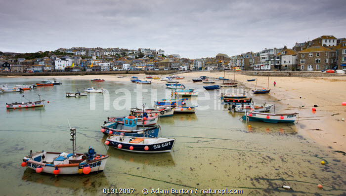 Small fishing boats moored near the beach in St Ives harbour, Cornwall, England. October 2009, AUTUMN,BOATS,COASTS,EUROPE,FISHING BOATS,HARBOURS,LANDSCAPES,MOORED,UK,VILLAGES,ENGLAND,United Kingdom,core collection xtwox, Adam Burton