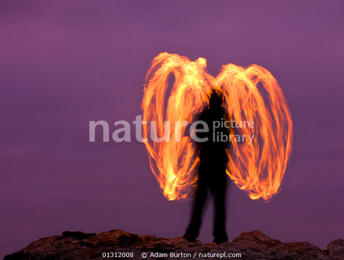 Man fire spinning (Fire Poi) on Cornish clifftops, Godrevy, Cornwall, England. October 2009  ,  ABSTRACT,ARTY SHOTS,AUTUMN,dancing,DUSK,entertainment,EUROPE,FIRE,LANDSCAPES,MAN,NIGHT,PEOPLE,TRADITIONAL,UK,ENGLAND,United Kingdom,core collection xtwox  ,  Adam Burton