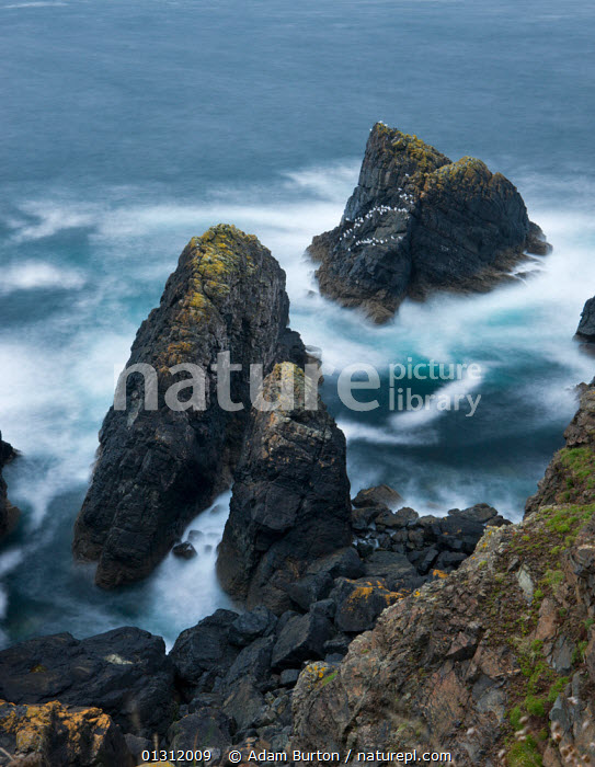 Rocky coastal outcrop 'The Crowns' at Botallack, Cornwall, England. October 2009, AUTUMN,COASTS,EUROPE,LANDSCAPES,ROCKS,TIME EXPOSURE,UK,VERTICAL,WAVES,ENGLAND,United Kingdom,core collection xtwox, Adam Burton