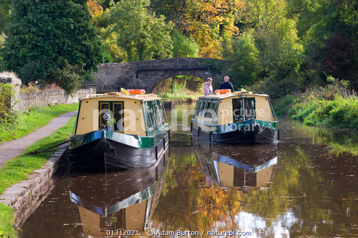 Narrowboat cruising on the Monmouthshire and Brecon Canal, Llangattock, Brecon Beacons National Park, Powys, Wales, UK. October 2009, AUTUMN,BOATS,BRECON BEACONS,BRIDGES,CANAL BOATS,CANALS,COUNTRYSIDE,CRUISING,LANDSCAPES,MOORED,NP,OUTDOORS,PEOPLE,RECREATIONAL,REFLECTIONS,RURAL,TRADITIONAL,UK,UPLAND,WALES,WATER,National Park,Europe,United Kingdom, Adam Burton