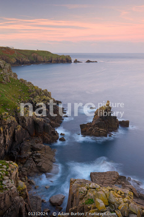 Looking towards the Irish Lady stack and Dr Syntax's Head from the cliffs of Pedn-men-du, Lands End, Cornwall, England. October 2009., AUTUMN,CLIFFS,COASTS,DUSK,EUROPE,LANDSCAPES,ROCKS,SEA,UK,VERTICAL,WATER,Geology,ENGLAND,United Kingdom,core collection xtwox, Adam Burton
