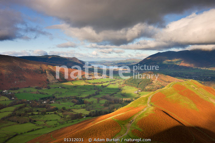 Newlands Valley looking towards Bassenthwaite Lake in the distance, from Cat Bells, Lake District National Park, Cumbria, England, UK. November 2009, ATMOSPHERIC,AUTUMN,CLOUDS,DRAMATIC,ENGLAND,EUROPE,FARMLAND,FELLS,FIELDS,HILLS,LAKE DISTRICT,LAKES,LANDSCAPES,MOORLAND,MOUNTAINS,NP,SUNNY,UK,UPLAND,Weather,National Park,United Kingdom, Adam Burton