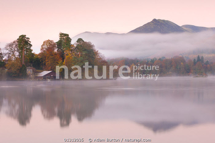 Boathouse on a misty Derwent Water, Lake District National Park, Cumbria, England. November 2009, ATMOSPHERIC,BUILDINGS,DAWN,ENGLAND,ISLANDS,JETTY,LAKE DISTRICT,LAKES,LANDSCAPES,MIST,NP,REFLECTIONS,UK,UPLAND,WINTER,Europe,National Park,United Kingdom, Adam Burton