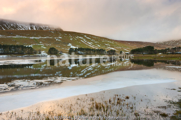 Reflections in the Upper Neuadd Reservoir, with Graig Fan Ddu escarpment in the background, Brecon Beacons National Park, Powys, Wales, UK. January 2010., BRECON BEACONS,CLOUDS,DUSK,EUROPE,ICE,LAKES,LANDSCAPES,NP,REFLECTIONS,SNOW,SUNSET,UK,UPLAND,WALES,WINTER,Weather,National Park,United Kingdom, Adam Burton