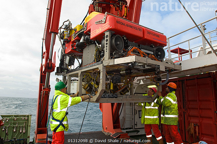 Launching ROV Isis (remotely operated vehicle) from James Cook research vessel over the mid Atlantic ridge, June 2010, ATLANTIC,BOATS,DEEPSEA,DEEP SEA,MARINE,MEN,OUTDOORS,PEOPLE,RESEARCH,SCIENCE,TEMPERATE,core collection xtwox, David Shale