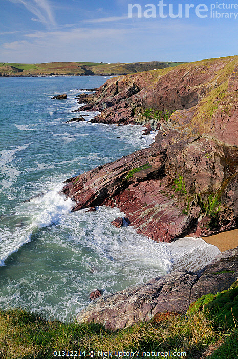 Waves breaking against rocks and cliffs near Polzeath at high tide. North Cornwall, UK, April 2010.  ,  CLIFFS,COASTS,COVES,ENGLAND,EUROPE,LANDSCAPES,ROCKS,SEA,SPRAY,SUNNY,SURF,UK,VERTICAL,WAVES,Geology,United Kingdom  ,  Nick Upton