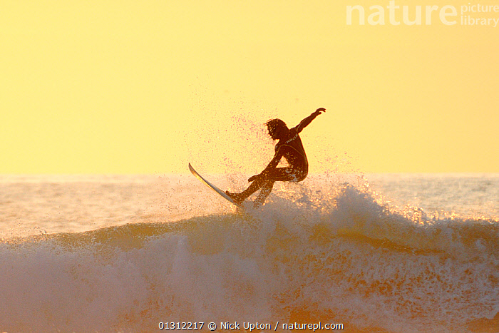Surfer on the crest of a wave, silhouetted at sunset. Polzeath, Cornwall, UK, April 2010., COASTS,ENGLAND,EUROPE,EXTREME,LANDSCAPES,LEISURE,OUTDOORS,PEOPLE,RECREATIONAL,SEASCAPES,SILHOUETTES,SPORTS,SUNSET,SURFING,TOURISM,UK,WATERSPORTS,WAVES,United Kingdom,core collection xtwox, Nick Upton