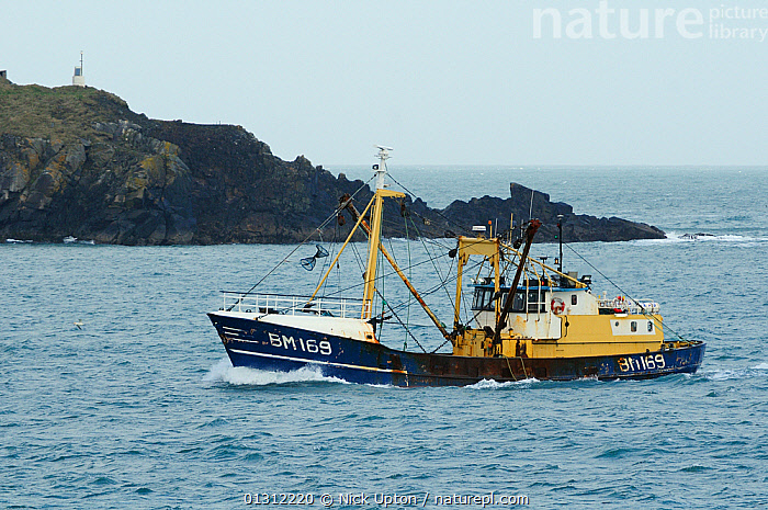 """Brixham beam trawler """"Three Sons"""" passing Stepper Point as it enters the mouth of the Camel Estuary, near Padstow, Cornwall, UK, April 2010., BEAM TRAWLERS,BOATS,COASTS,ENGLAND,EUROPE,FISHERIES,FISHING,FISHING BOATS,HEADLANDS,LANDSCAPES,PROFILE,ROCKS,SEA,TRAWLERS,UK,WORKING,WORKING-BOATS ,United Kingdom, Nick Upton"""