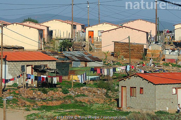 Low cost housing. Bangalashu, Oudtshoorn, Little Karoo, South Africa, AFRICA,AFRICAN,HOUSES,KAROO,LITTLE, Tony Phelps