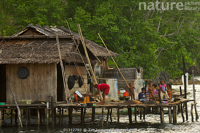 A family at their house in Kabilo Village. This is an area of Waigeo Island visited by Alfred Russel Wallace in the 1850's. West papua, Indonesia, April 2007  ,  ASIA,BUILDINGS,CHILDREN,COASTS,CULTURES,FAMILIES,HOUSES,INDONESIA,INDO PACIFIC,IRIAN JAYA,LIFESTYLE,MARINE,OCEANS,OUTDOORS,PEOPLE,SOUTH EAST ASIA,TRIBES,WATER,SOUTH-EAST-ASIA,NEW-GUINEA,CONCEPTS ,core collection xtwox  ,  Tim Laman