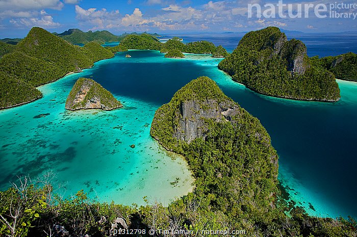 Aerial view of the Wayag Islands, an uninhabited group of uplifted limestone (karst) islands, NW of Waigeo Island. West Papua, Indonesia, April 2007  ,  AERIALS,ASIA,BEAUTIFUL,COASTS,CONCEPTS,FORESTS,INDONESIA,INDO PACIFIC,IRIAN JAYA,ISLANDS,LANDSCAPES,MARINE,OCEANS,PACFIC,PARADISE,SOUTH EAST ASIA,TROPICAL  ,  Tim Laman