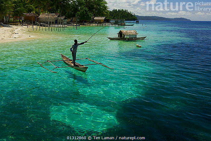 View of beach, and man fishing from a dugout canoe, at Yenbeser Village. Alfred Russel Wallace based himself in this village for several months in the 1850's. Raja Ampat Islands, Indonesia. May 2007, ASIA,beach,BEACHES,canoe,CANOES,catalogue3,coastal,dugout canoe,elevated view,FISHING,house on stilts,INDONESIA,INDO PACIFIC,Irian Jaya,LANDSCAPES,local industry,local people,MAN,MARINE,OCEANS,one man only,one person,outdoors,PEOPLE,Raja Ampat Islands,sea,Shallow,SOUTH EAST ASIA,STANDING,TRADITIONAL,Travel,TROPICAL,view to land,villager,WATER,Yenbeser Village,OPEN-BOATS,BOATS,SOUTH-EAST-ASIA,NEW-GUINEA,core collection xtwox, Tim Laman