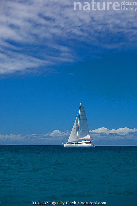 """Privilege 745 catamaran """"Matau"""" cruising in the Grenadines, Caribbean, January 2010. Property released.  ,  BOATS,CARIBBEAN,CATAMARANS,CRUISING,FREEDOM,MULTIHULLS ,PROFILE,SAILING BOATS,TROPICAL,TURQUOISE,VERTICAL,WEST INDIES,YACHTS,CONCEPTS  ,  Billy Black"""