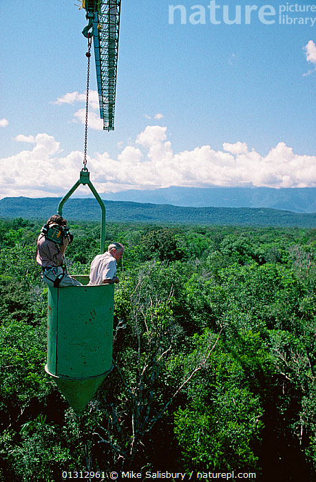 Camerawoman Justine Evans filming presenter Sir David Attenborough in a canopy crane on location for BBC Natural History Unit series 'Life of Birds'. Venezuela, 1997  ,  CANOPY,FILMING,NHU,OUTDOORS,PEOPLE,RAINFOREST,SOUTH AMERICA,TROPICAL RAINFOREST,VERTICAL  ,  Mike Salisbury