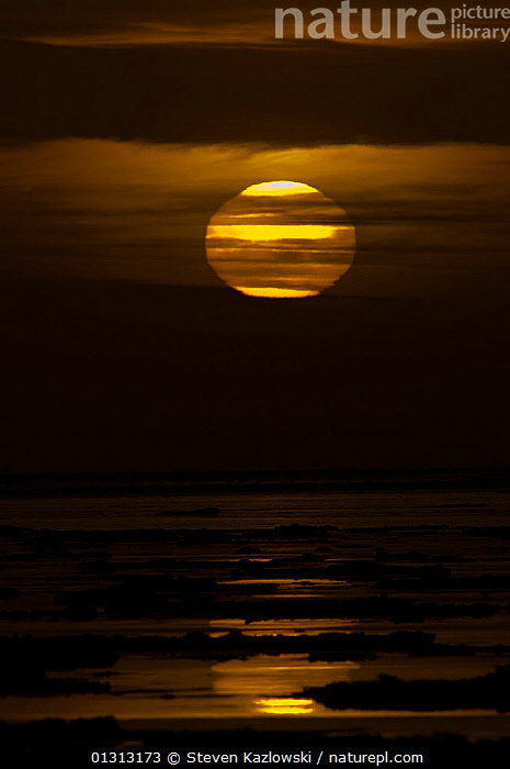 Sun rising though the clouds from the eastern horizon, as seen from Barter Island, 1002 area of the Arctic National Wildlife Refuge, Alaska  ,  ARCTIC,ATMOSPHERIC,AUTUMN,CLOUDS,COASTS,DAWN,ICE,LANDSCAPES,NORTH AMERICA,OCEANS,SKY,SUN,SUNRISE,USA,VERTICAL,WATER,Weather  ,  Steven Kazlowski