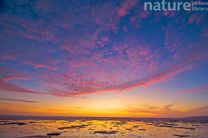 Colourful sunrise over the Beaufort sea, Arctic Alaska. October 2009  ,  ARCTIC,ATMOSPHERIC,AUTUMN,book,CLOUDS,COLOURFUL,DAWN,ICE,LANDSCAPES,NORTH AMERICA,OCEANS,SKIES,SUNRISE,Weather,core collection xtwox  ,  Steven Kazlowski