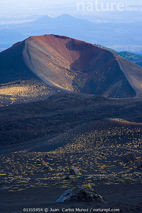 Mount Etna, with vegetation, Sicily, Italy, October 2007, catalogue6,ITALY,Colour,Brown,Yellow,No One,Nobody,Europe,Southern Europe,South Europe,Italy,Sicily,Craters,Light,Lights,Sunlight,Outdoors,Open Air,Outside,Day,Geology,Mount Etna,Vegetation, Juan  Carlos Munoz