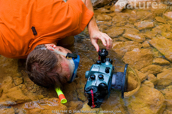 Photographer Inaki Relanzon wearing snorkel and mask while photographing Pyrenean brook salamander (Euproctus asper) in stream, Pyrenees mountains, Catalonia, Spain.  ,  AMPHIBIANS, camera, cameras, EUROPE, MACRO, outdoors, PEOPLE, PHOTOGRAPHY, PORTRAITS, pyrenees, SALAMANDERS, SMALL, SPAIN, VERTEBRATES, WATER, WORKING  ,  Inaki Relanzon