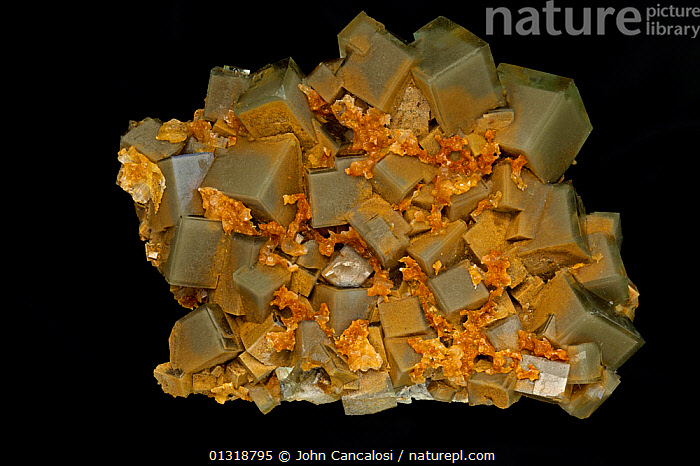 Fluorite (CaF2 / calcium fluoride) crystals, from China, Fluorite is a source of fluorine used in the manufacture of milk glass, as a flux for the steel industry and in refining aluminum.  ,  CHINA,CRYSTALS,GEOLOGY,MINERALS,ROCKS,SPECIMEN,SPECIMENS,Asia  ,  John Cancalosi