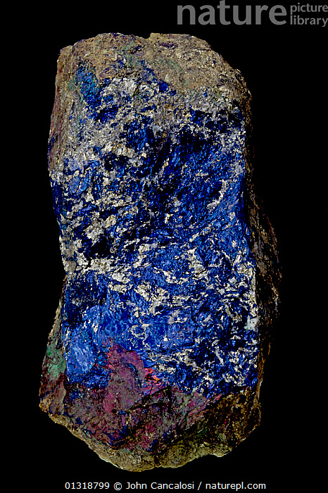 Covellite [CuS / Copper Sulfide] from the Leonard mine, Butte, Montana, USA, an ore of copper - massive form  ,  BLUE,CRYSTALS,GEOLOGY,MINERALS,ROCKS,USA,VERTICAL,North America  ,  John Cancalosi