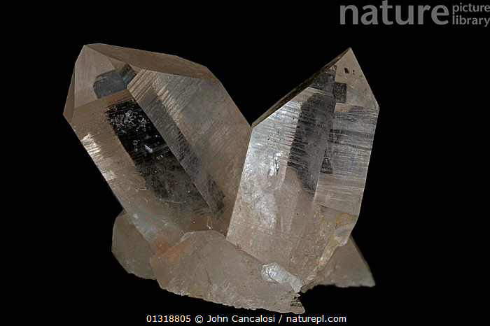 Quartz crystals [SiO2 / Silicon dioxide] The most common mineral on earth, Many industrial uses including glass  ,  CRYSTALS,GEOLOGY,MINERALS,ROCKS  ,  John Cancalosi