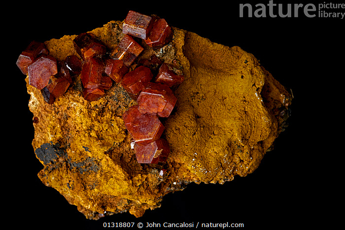 Vanadinite crystals [Pb5(VO4)3Cl / Lead chlorovanadate] from Mibladen, Morrocco. One of the main ores of vanadium and a minor ore of lead  ,  CRYSTALS,GEOLOGY,MINERALS,NORTH AFRICA,ROCKS  ,  John Cancalosi