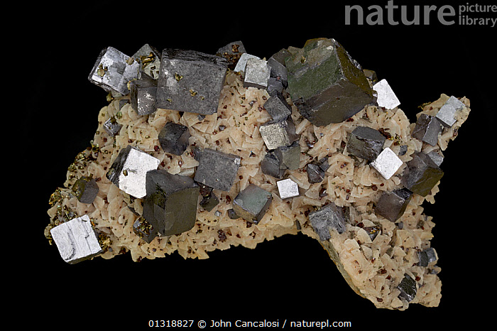 Galena (PbS - lead sulphide) The primary ore of lead, from the tri-state area of Oklahoma, USA  ,  CRYSTALS,GEOLOGY,MINERALS,ROCKS,USA,North America  ,  John Cancalosi