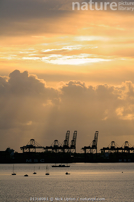 Felixstowe docks and loading derricks at dawn. Suffolk, UK, May 2010  ,  BOATS,CLOUDS,COASTS,DAWN,DOCKS ,ENGLAND,EUROPE,HARBOURS,INDUSTRY,LANDSCAPES,MARINE,PORTS,SILHOUETTES,SUNRISE,UK,VERTICAL,WATER,Weather,United Kingdom,core collection xtwox  ,  Nick Upton