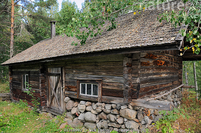 Traditional Finnish sauna building. Tolvanniemen, near Savonlinna, Finland, August 2010  ,  BUILDINGS,EUROPE,FINLAND,SAUNAS,SAVONIA,SCANDINAVIA,STEAM ROOM,TRADITIONAL,TREATMENTS,TREES,WOODEN,PLANTS  ,  Nick Upton