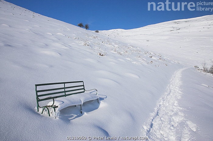 Snow covered bench by a footpath in the Malvern Hills. Worcester, UK, February 2010.  ,  bench,benches,COLD,EMPTY,EUROPE,footprints,LANDSCAPES,noboby,paths,seats,SNOW,UK,WHITE,WINTER,United Kingdom  ,  Peter Lewis