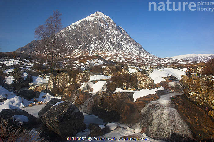 Buachaille Etive Mor in winter. Rannoch Moor, Glen Coe, Scotland, March 2010.  ,  COUNTRYSIDE,EUROPE,HIGHLANDS,LANDSCAPES,MOUNTAINS,Nobody,SCOTLAND,SNOW,UK,WINTER,United Kingdom  ,  Peter Lewis