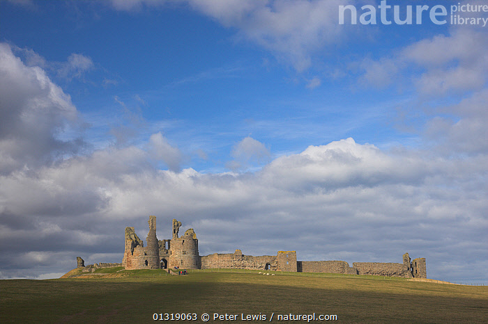 The outer wall of Dunstanburgh Castle. Northumberland, UK, March 2010.  ,  BUILDINGS,CASTLES,COUNTRYSIDE,EUROPE,LANDSCAPES,Medieval,SKIES,UK,United Kingdom  ,  Peter Lewis