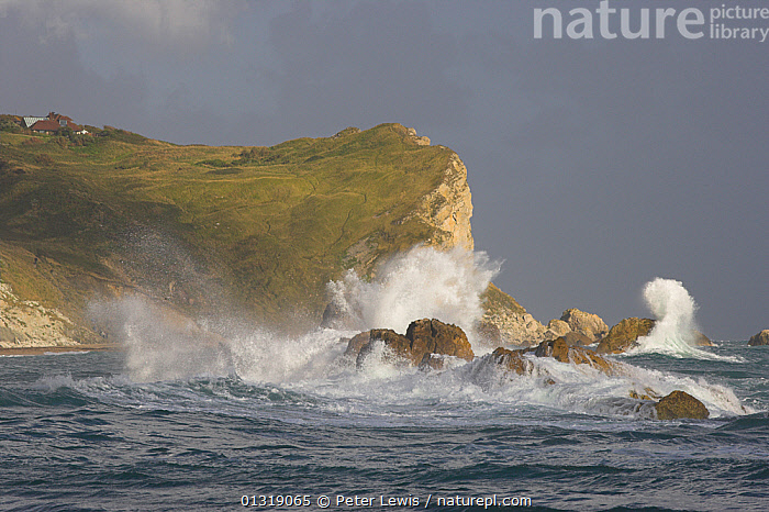 St Oswald's Bay pounded by storm waves. Between Durdle Door and Lulworth Cove, Dorset, UK, September 2009.  ,  bad weather,BUILDINGS,CLIFFS,COASTS,COUNTRYSIDE,danger,EUROPE,LANDSCAPES,Nobody,ROCKS,sea,seas,seascapes,STORMS,UK,WATER,Geology,ENGLAND,WEATHER ,United Kingdom,,Dorset and East Devon Coast, UNESCO World Heritage Site,  ,  Peter Lewis