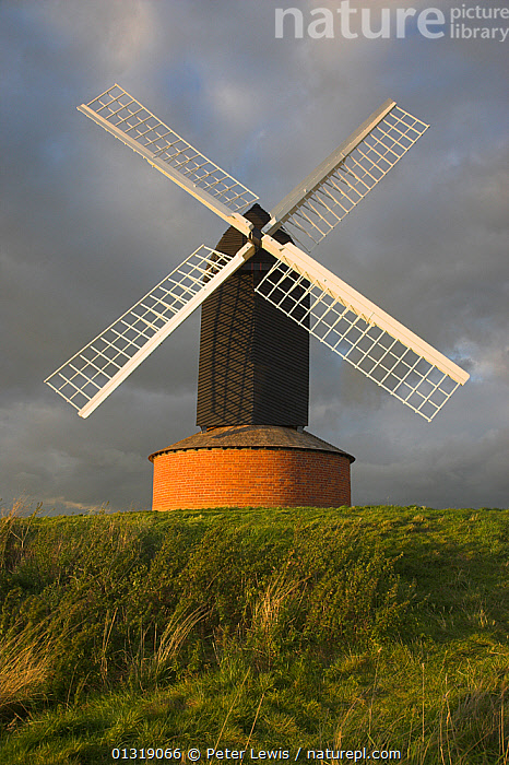 Brill Windmill built in 1668, one of the oldest postmills in Great Britain. Brill, the vale of Aylesbury, Buckinghamshire, UK, September 2009.  ,  BUILDINGS,EUROPE,Historic,symmetry,UK,VERTICAL,windmills,United Kingdom  ,  Peter Lewis