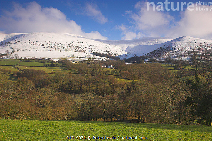 View of the Black Mountains in winter. Brecon Beacons National Park, Powys, Wales, January 2010.  ,  COUNTRYSIDE,EUROPE,fields,hills,LANDSCAPES,MOUNTAINS,NP,SNOW,UK,WALES,National Park,United Kingdom  ,  Peter Lewis
