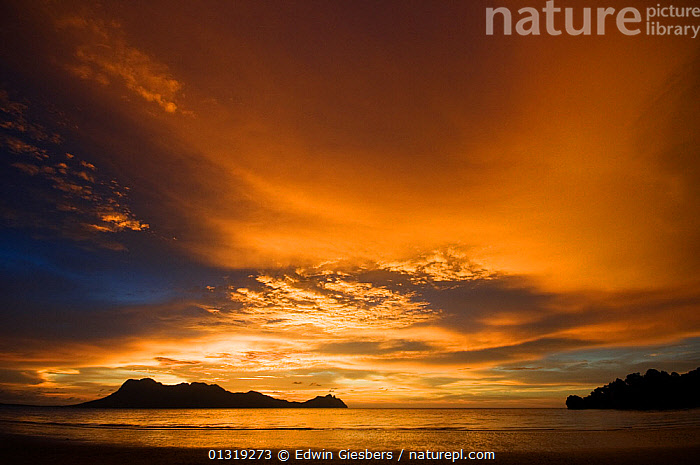 View of sunset and colourful skies, from the beach at Bako National Park, Sarawak, Borneo, Malaysia, June 2010  ,  ASIA,ATMOSPHERIC,BEACHES,BORNEO,BORNEO ISLAND,COASTS,COLOURFUL,DUSK,MALAYSIA,NP,SKIES,SOUTH EAST ASIA,National Park  ,  Edwin Giesbers