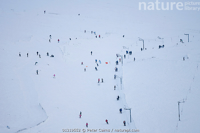 Ski slope and ski lift with skiers skiing. Cairngorm ski centre, Scotland, February.  ,  EUROPE,GROUPS,LEISURE,OUTDOORS,PEOPLE,SCOTLAND,SKIING,SNOW,SPORT,SPORTS,UK,WHITE,United Kingdom  ,  Peter Cairns