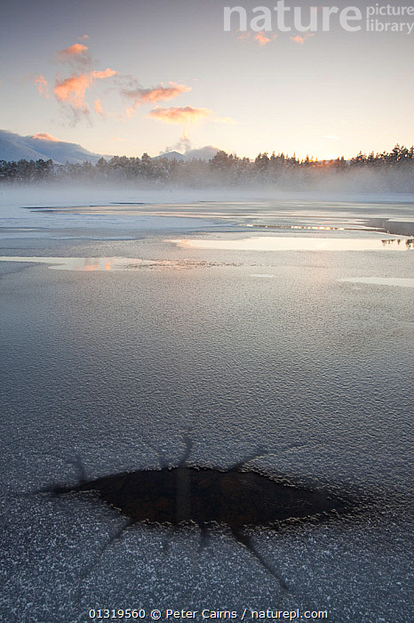 Ice and mist over Loch Morlich in winter. Cairngorms National Park, Scotland, February 2010.  ,  ATMOSPHERIC,COLD,EUROPE,ICE,LANDSCAPES,MIST,NP,PEACEFUL,RESERVE,SCOTLAND,UK,VERTICAL,WATER,WEATHER ,National Park,United Kingdom,core collection xtwox  ,  Peter Cairns