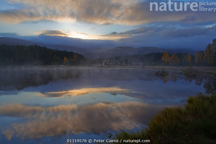 Dawn as mist rises from Uath Lochans. Glenfeshie, Scotland, October 2009.  ,  ATMOSPHERIC,BEAUTY,BEAUTY IN NATURE,CLOUDS,DAWN,EUROPE,HIGHLANDS,LAKES,LANDSCAPES,MIST,NP,PEACEFUL,REFLECTIONS,RESERVE,SCOTLAND,SUNRISE,UK,WATER,Weather,National Park,United Kingdom,core collection xtwox  ,  Peter Cairns